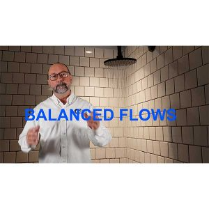 Balanced Flows